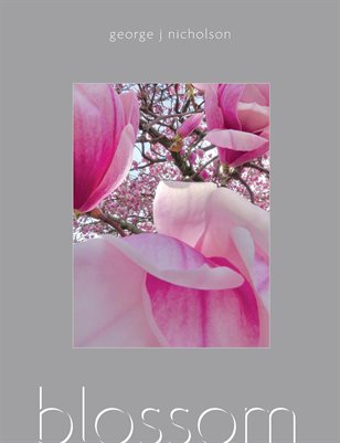 BLOSSOM (46 Pages)