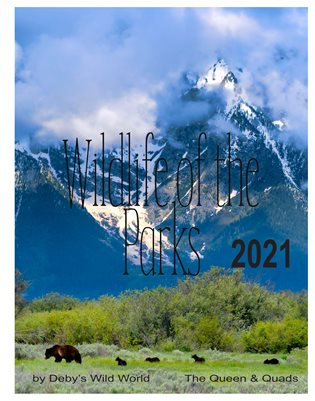 Wildlife of the Parks 2021 Calendar