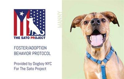 SATO - Foster/Adoption Protocol