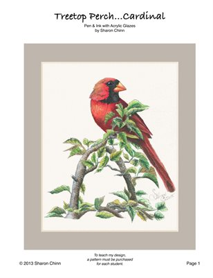 Treetop Perch (Pen and Ink Cardinal) by Sharon Chinn SC15949