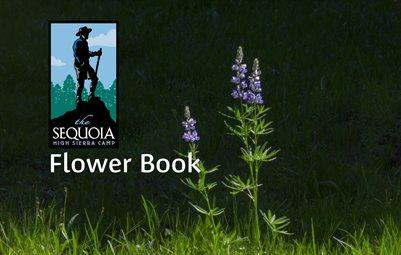 Sequoia High Sierra Camp Flower Book