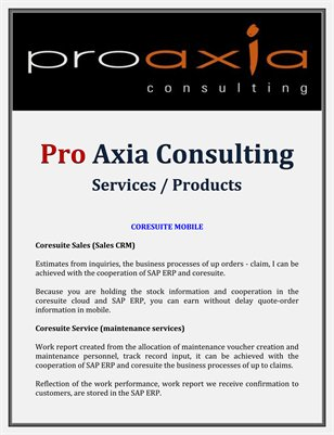 Pro Axia Consulting: Services / Products