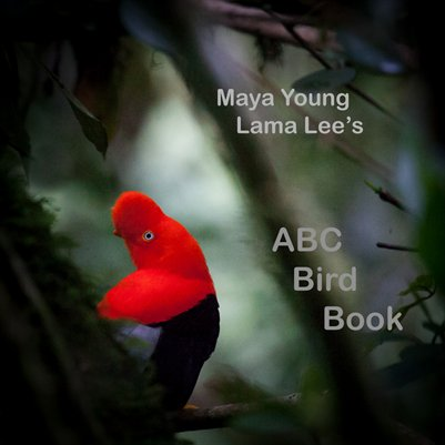Maya's ABC Bird Book