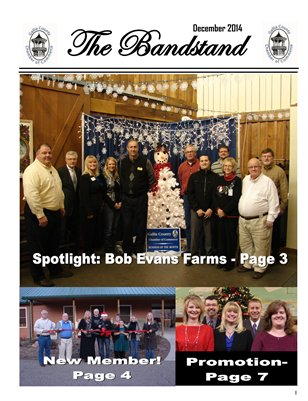 The Bandstand December 2014