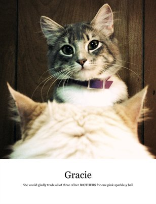 Gracie's first year, in photographs