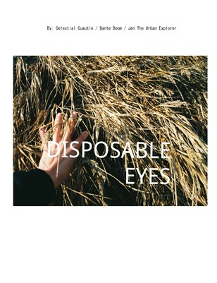 Disposable Eyes Zine #2