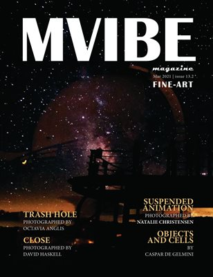 MVIBEmagazine Mar 2021 issue13.2 Fine-Art