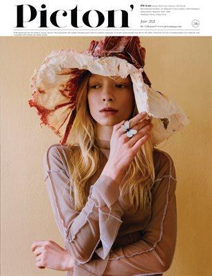 Picton Magazine Jun 2021 N546