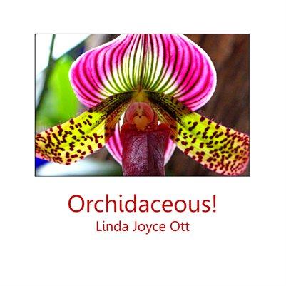 Orchidaceous!