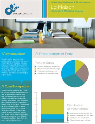 Business Customer Case Study Flyer