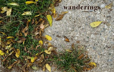wanderings, volume one