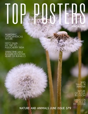 TOP POSTERS MAGAZINE- NATURE AND ANIMALS JUNE (Vol 379)