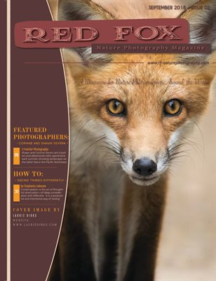 Issue 02: Fall 2018 - Red Fox Nature Photography