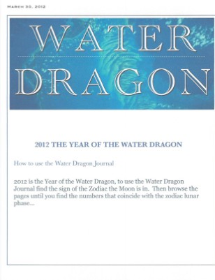 Enter the Dragon 2012