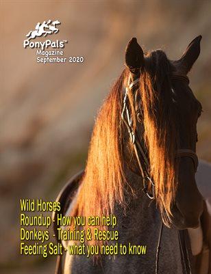 September 2020 Pony Pals Magazine - Vol. 4 #10
