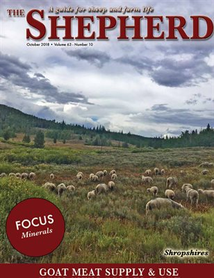 The Shepherd October 2018