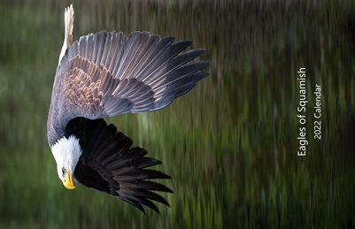 Bald Eagle Art Calendar 2022