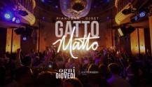 Gatto Matto - Il Giovedì Del Gattopardo