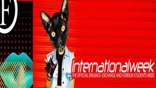 International Week by Old Fashion