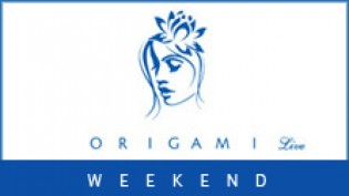 Weekend all'Origami Live!