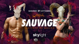 Halloween Skylight Verona
