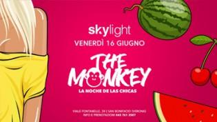 The Monkey - Reggaeton & Latino at Skylight Disco