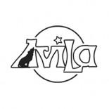 Avila Discodinner