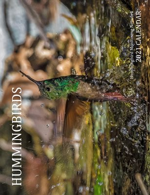 HMN's 2021 Hummingbirds Calendar