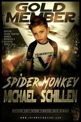 Michael Schillen Gold Member/Diploma Poster