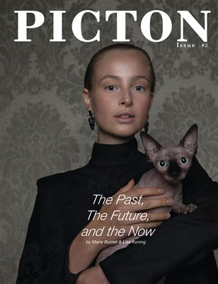 Picton Magazine Issue 2, Cover 1