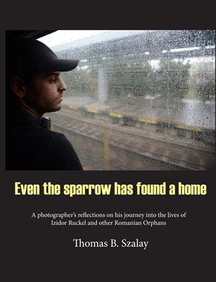Even the Sparrow has found a home