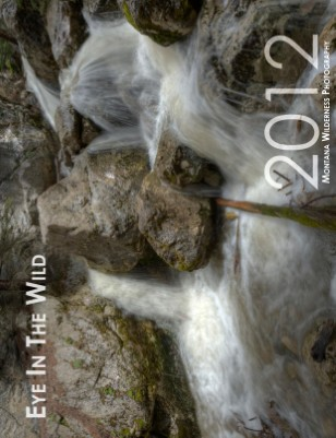 Eye In The Wild 2012 Calendar
