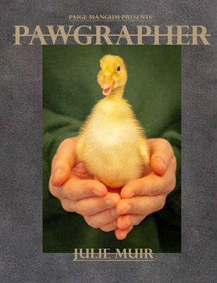 Pawgrapher issue 2