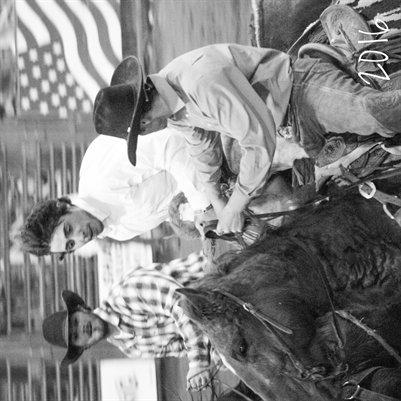 Bullriding and saddle bronc
