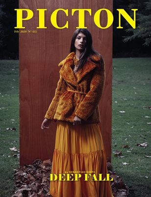 Picton Magazine February  2020 N435 Cover 3