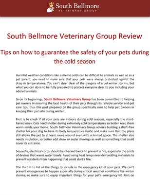 South Bellmore Veterinary Group Review: Tips on how to guarantee the safety of your pets during the cold season
