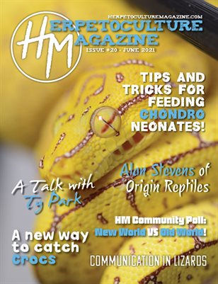 Issue #20 - June 2021