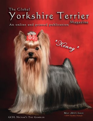 The Global Yorkshire Terrier Magazine -MAY 2015