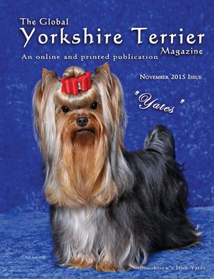 The Global Yorkshire Terrier Magazine - NOVEMBER 2015
