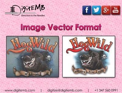 Image Vector Format