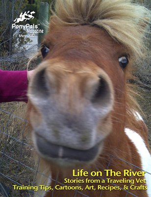 May 2012 Pony Pals Magazine Vol. 1 #12