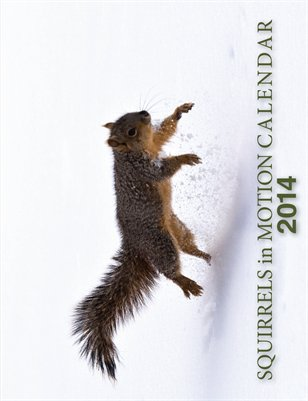 Squirrels in Motion Calendar 2014