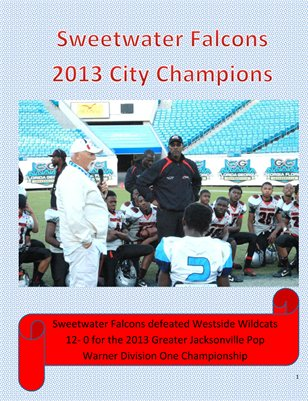 Sweetwater Falcons Jacksonville 2013 City Champions