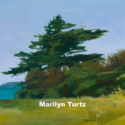 Marilyn Turtz Bio
