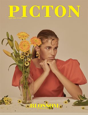 Picton Magazine APRIL 2020 N486 Cover 3