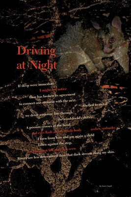 """Driving At Night"""