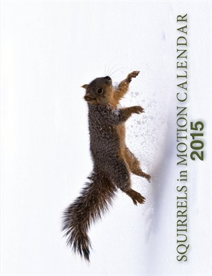 2015 Squirrels in Motion Calendar