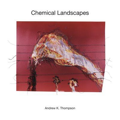 Chemical Landscapes