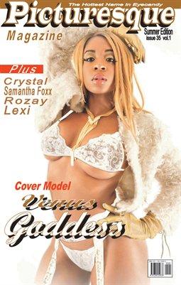 Picturesque Magazine 35