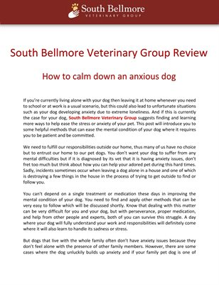 South Bellmore Veterinary Group Review: How to calm down an anxious dog